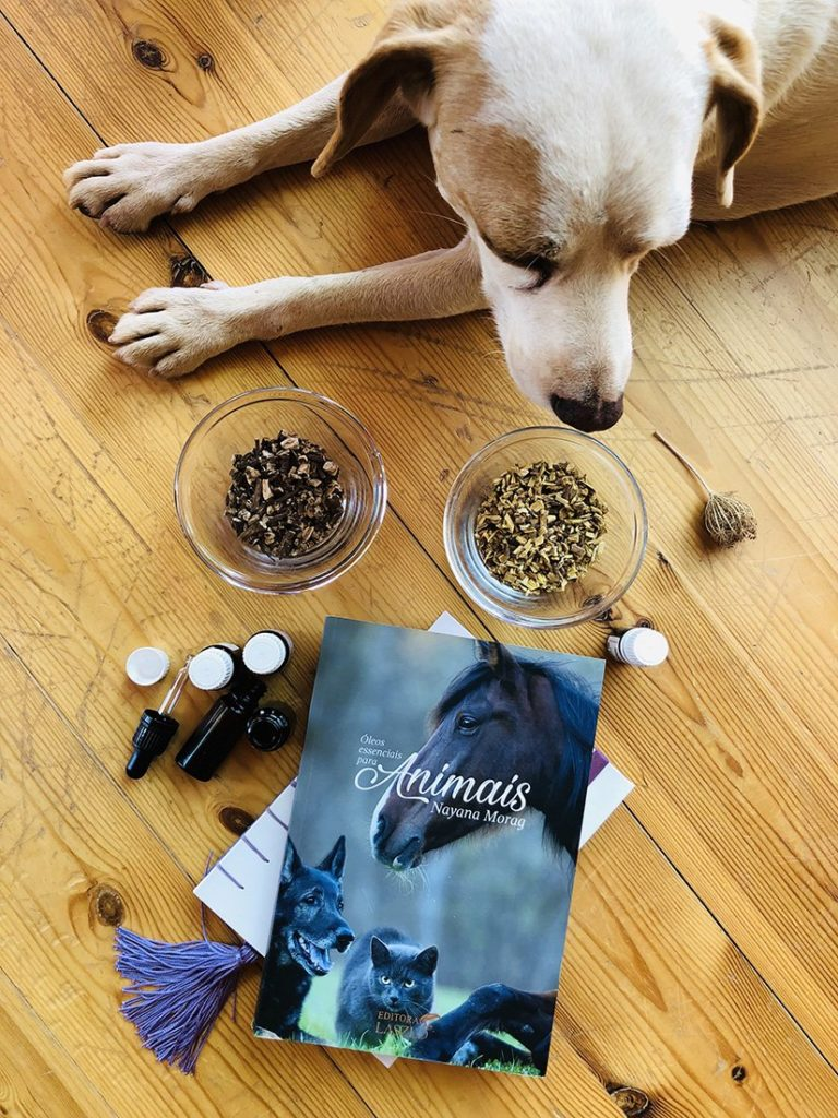Best Essential Oil For Animals