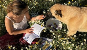 learn-essential-oils-dog-selects