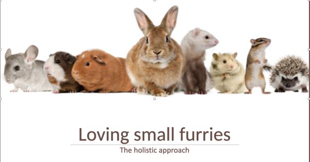 Loving-Small-Furries